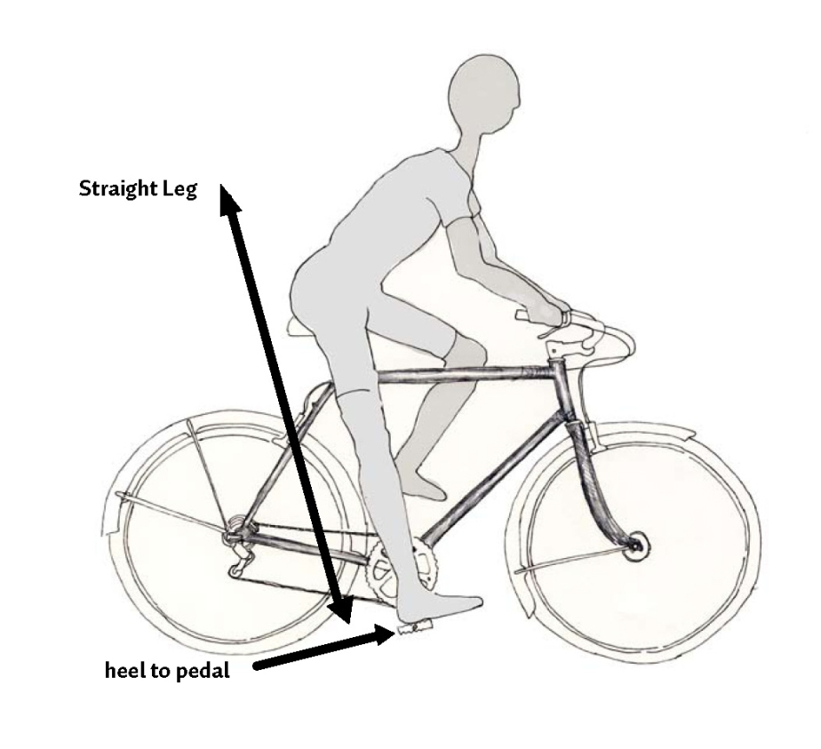 Seat height infographic